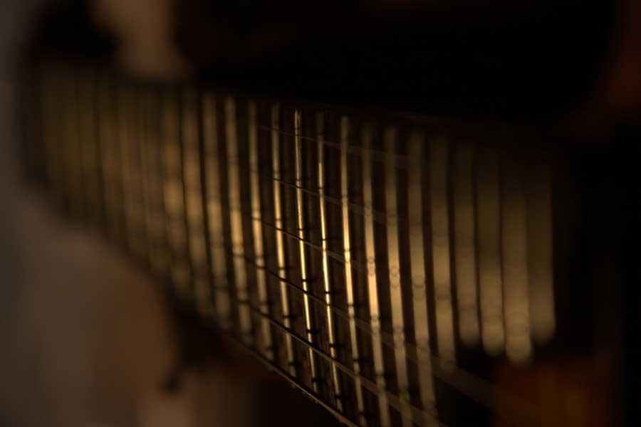 Gold Fusion Guitar Frets